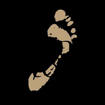 Logo Living Stone B